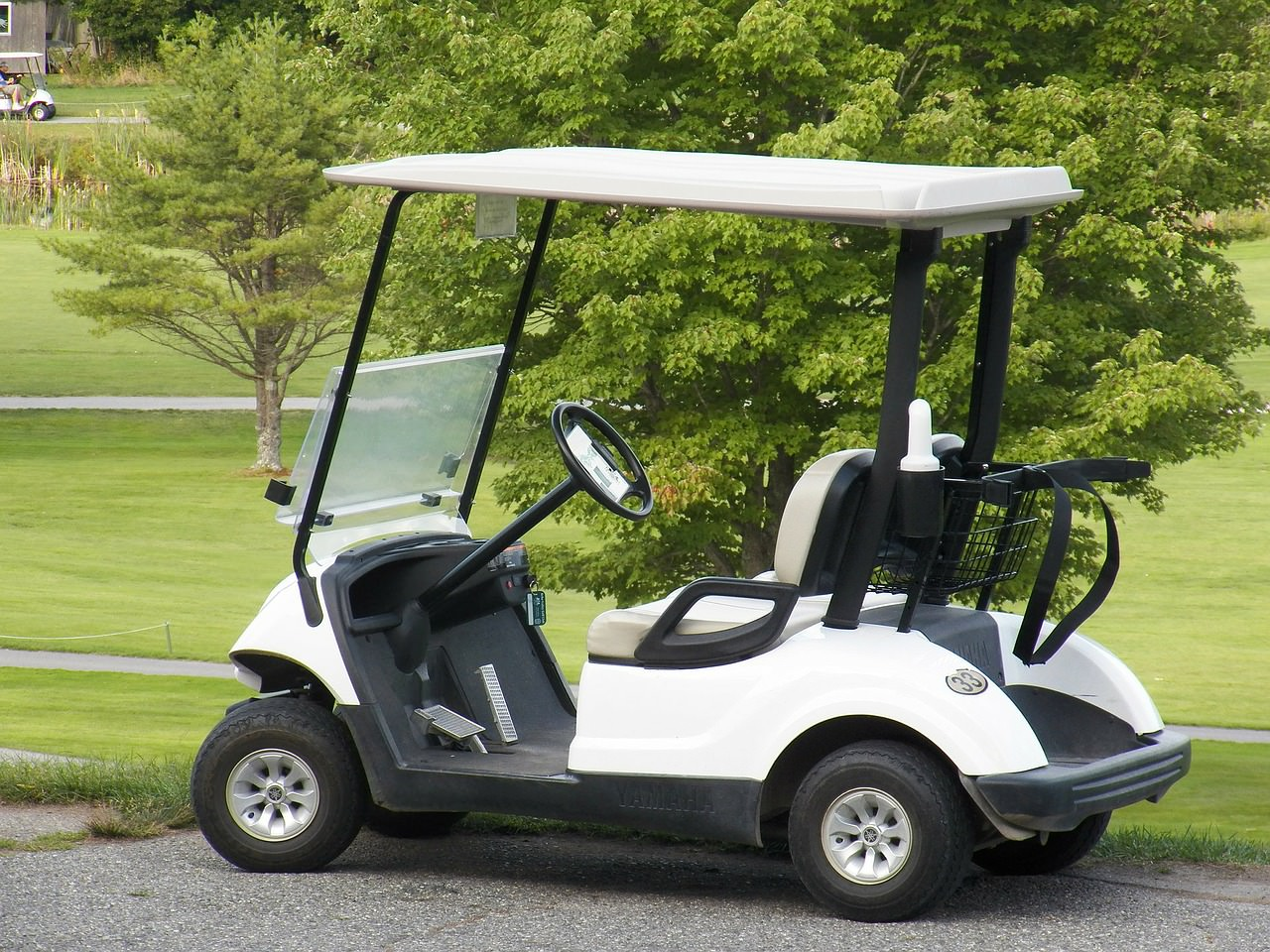 Best Batteries for Golf Cart Reviews and Buying Guide of 2019