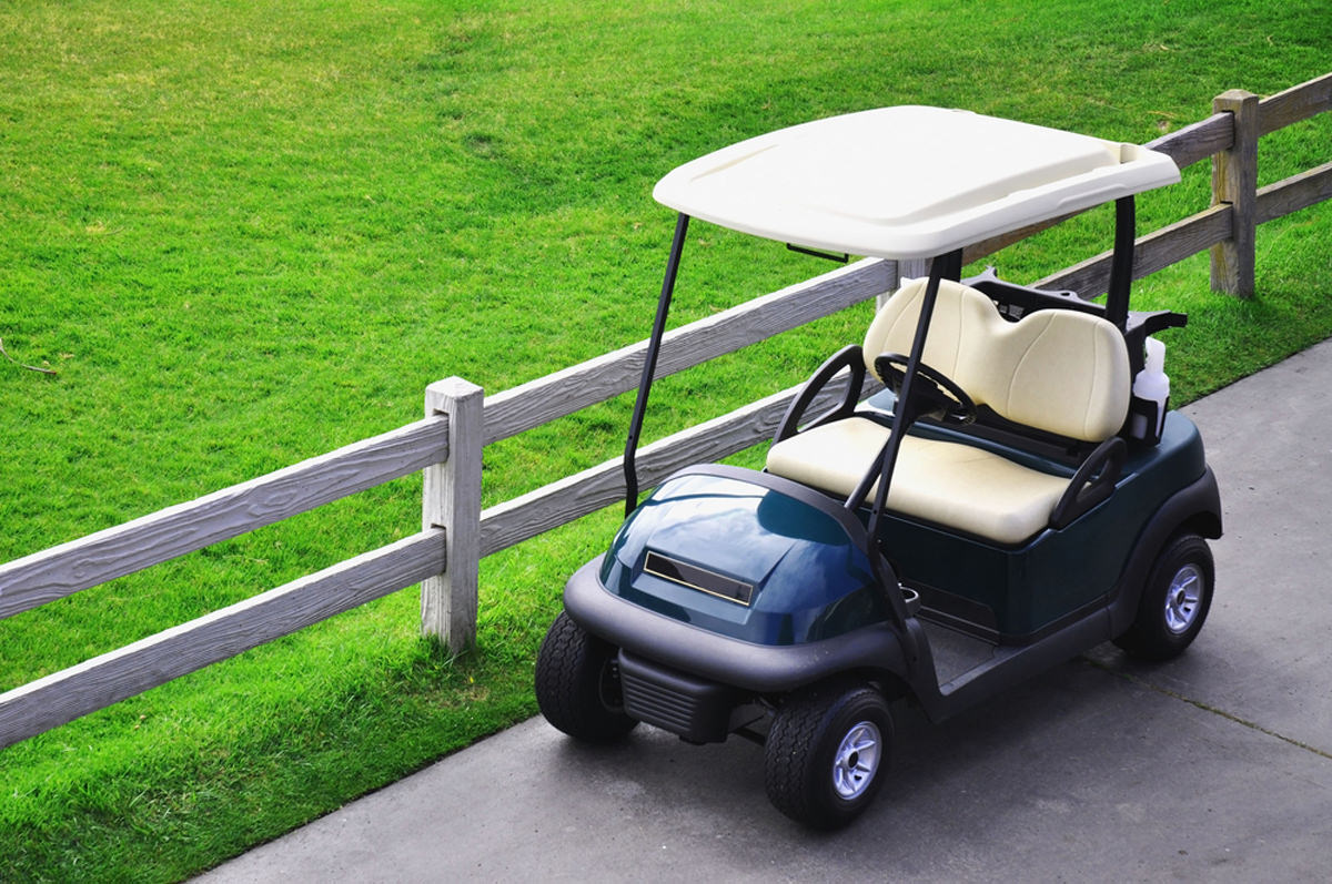 Best 12-volt golf cart batteries